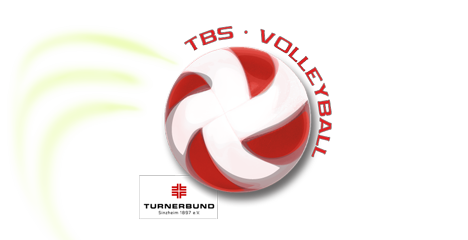 logo-volleyball-sinzheim